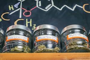 cannabis product marketing customer journey