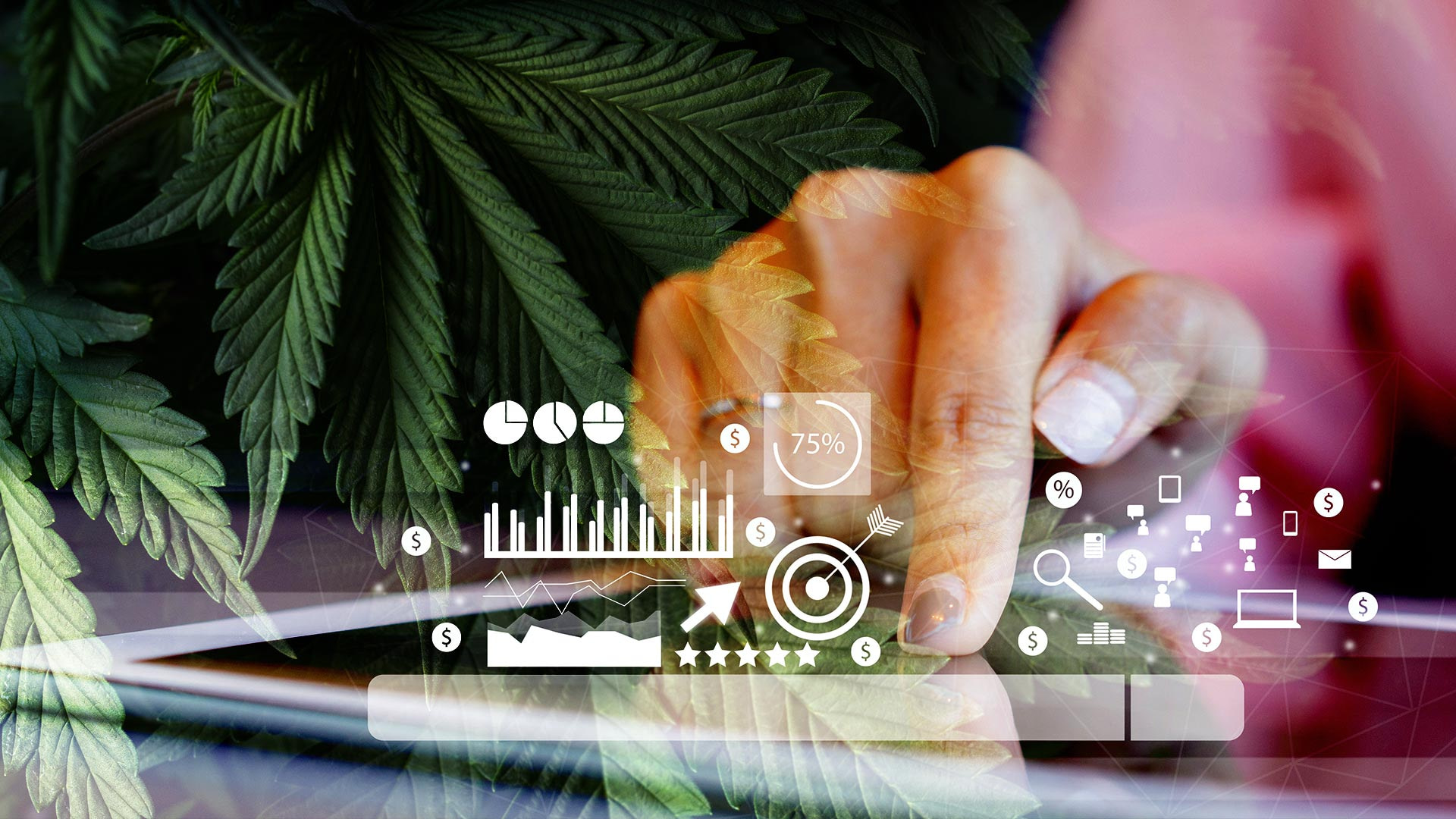 best cannabis hemp friendly advertisers 2021 blog