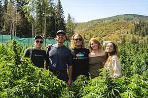 pot zero colorado organic cannabis farm blog