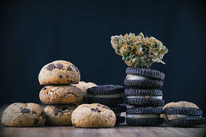 washington state edibles cannabis tourism laws