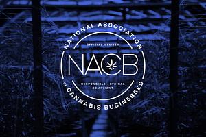 nacb national association cannabis businesses member