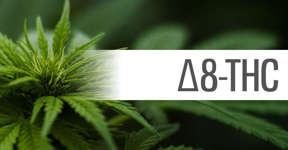 delta 8 thc cannabinoid education blog