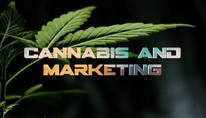 cannabis marketing blog