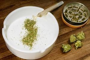 new jersey recreational cannabis marketing