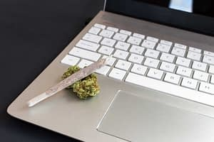cannabis social media guidelines marketing strategy