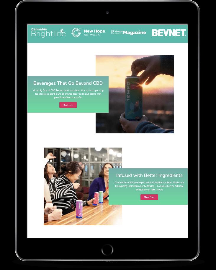 tempo beverage cbd website design seo