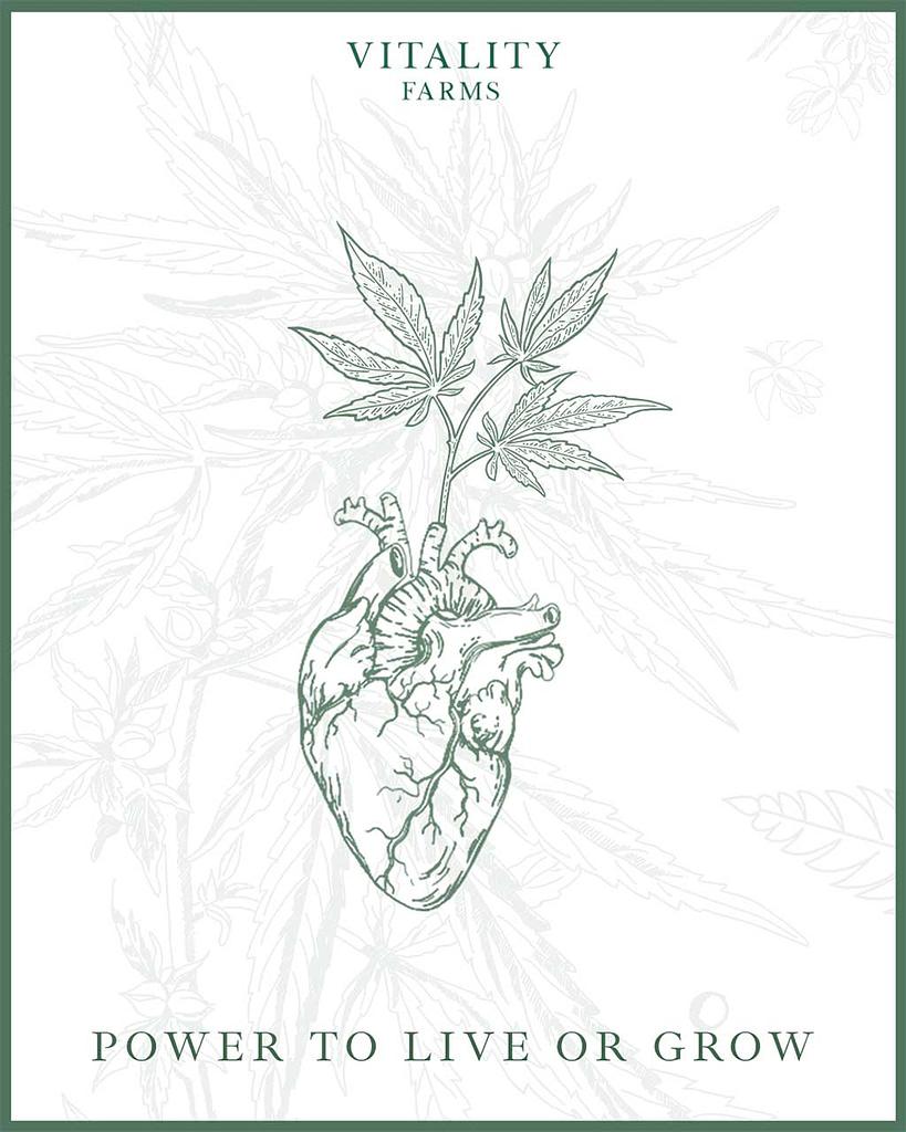 vitality farms hemp graphic design
